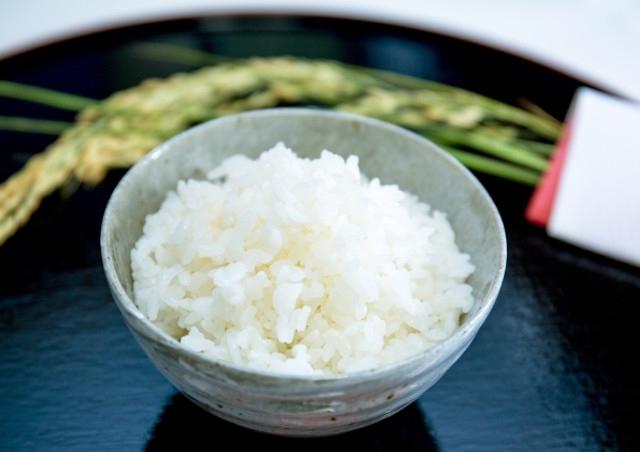 農家直送のコシヒカリをお届け!~もちもちでつや・香り・甘みに優れたおいしいお米~