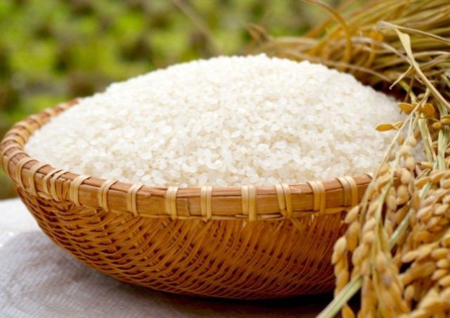 産地直送のコシヒカリなら【かりやす農園】~減農薬のお米を5キロからお届けします~