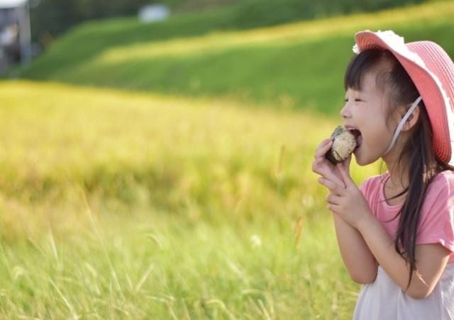 会津のコシヒカリなら【かりやす農園】~家族・友人とのシェアでお得に買い物を楽しむ~